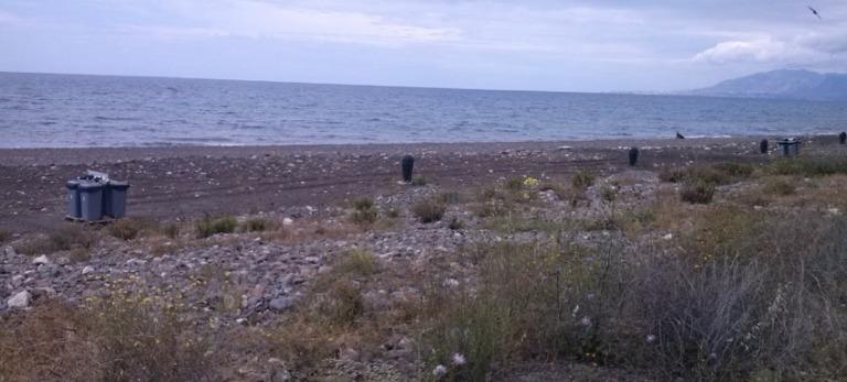 playa-para-perros-en-arroyo-totalan-malaga